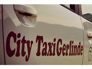 Logo Taxi Gerlinde Inh. Gerlinde Schwarz