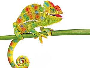 Logo 100%FARBE - Farben - Lacke - Künstlerbedarf
