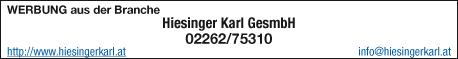 Hiesinger Karl Gesellschaftm.b.H