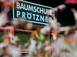 Logo Baumschule und Gartengestaltung Prötzner