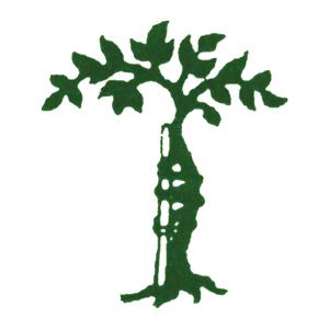 Logo Plattner Erwin Dr.