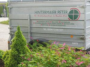 Logo Hintermaier Peter - Ihr Ansprechpartner in Sachen Holz