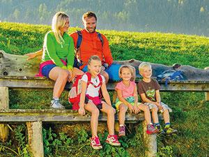 Logo Tourismusverband Naturpark Zirbitzkogel - Grebenzen