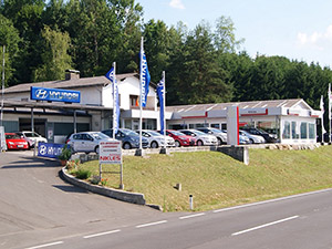 Zum Detaileintrag von Autohaus Nikles GmbH