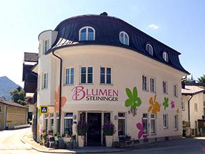 Logo Blumen Steininger