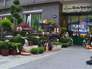 Logo Grasberger Landschaftsbau-Pflasterung GmbH