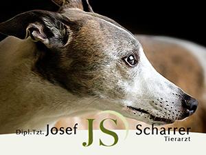 Logo Dipl-TA Josef Scharrer