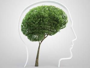 Logo Psychotherapeutische Praxis Ulrike HADERER - Institut für seelische Gesundheit