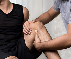 Logo Physio Haus - Michael Podhajsky - Physiotherapie & Osteopathie