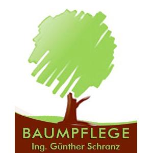 Logo Baumpflege Schranz & Seifriedsberger KG