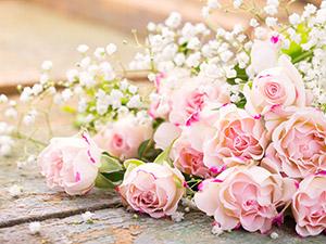 Blumen am Platzl Andrea Ferian