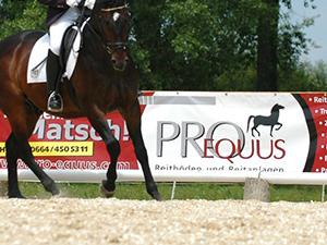 Logo Pro Equus - Joachim Längle