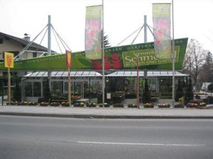 Logo Blumen im Bahnhof Veronika Schmeikal