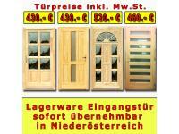 Lagerware Holz Haustür Eingangstür und Nebeneingangstür