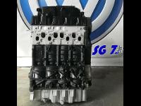 BLS Motor Generalüberholt