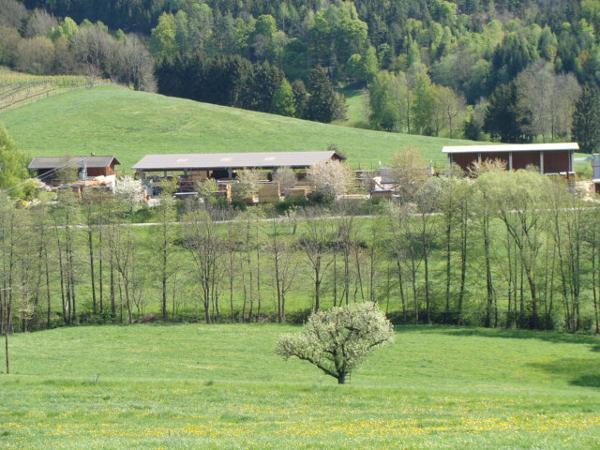 Partnersuche in Thannhausen fr Singles ab 50