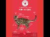 Thumbnail Streichel Anleitung für Katzen