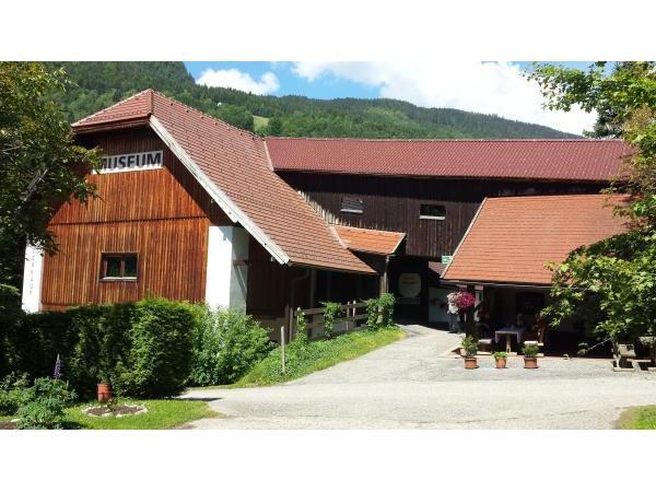 Museum - Pilz-Wald-Erlebniswelt