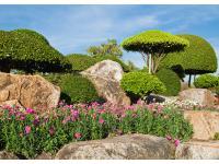 Berger Garten & Pflasterbau in Wals bei Salzburg
