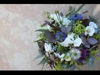 Blumen Neuhauser