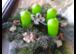 Mit Blumen Freude zaubern 02162 67969
