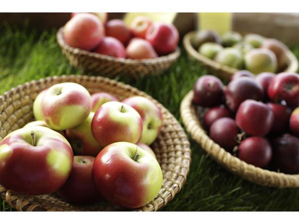 über 50 Apfelsorten