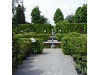 Forum Viridarium Schaugärten-Pflanzenverkauf