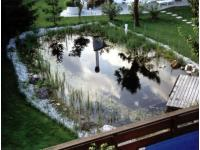 Garten- u Teichbau Gerhard Kuttner