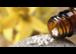 Ärztin für Allgemeinmedizin und Homöopathie