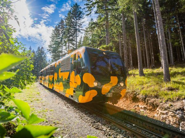 Vorschau - Schneebergbahn - Salamanderzug