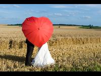 Hochzeitsschirme & Hosenträger
