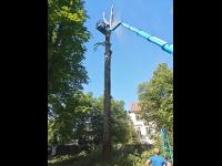 Makula Services - Günther Makula
