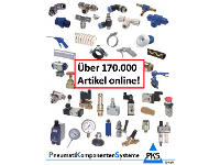 170.000 Artikel online