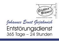 Elektro Blümel