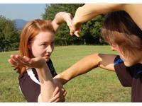 Wing Tai Art - Kampfkunst Konzepte