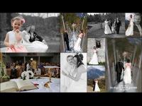 Hochzeit von Petra & Stefan