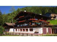Bergwald Alpbach Tirol Austria