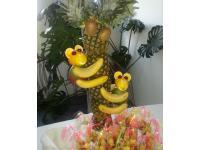 Affen-Palme Eröffnung Wissensdschungel