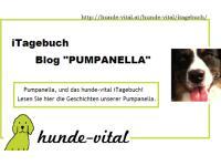 "iTagebuch Blog ""PUMPANELLA"""