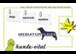 dog-network-austria