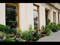 Außenansicht Flowercompany Pilgramgasse Nr.4