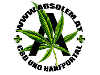 Absolem Logo