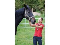 Chiropraktik und Behandlung von Pferden