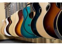 Gitarren | Musikinstrumente Danner Linz