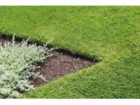 GARTEN HÖDL Gartengestaltung