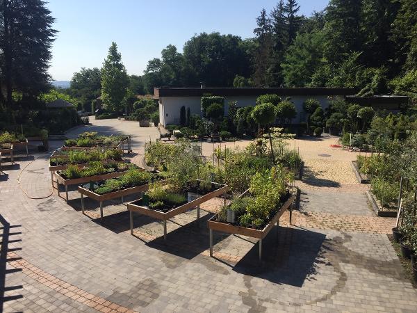 Maly Gartengestaltung 1