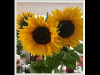 Blütenwerk Hochleitner Manuela