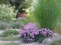 Minhard Gartengestaltung