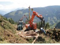 Holzarbeiten in Eschenau/Taxenbach