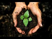 Boden- und Grundwassersanierung
